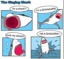 Shyark
