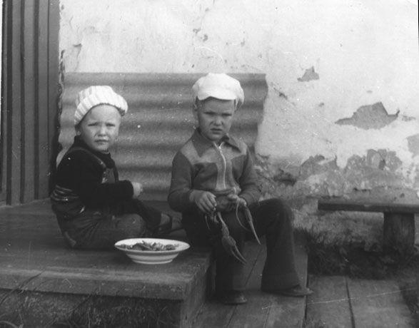 Нормальные речные раки, примерно 1980 год, Беларусь, Давид-Городок, река Горынь