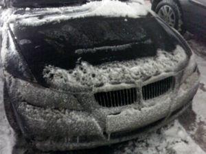 ..последствия зимы